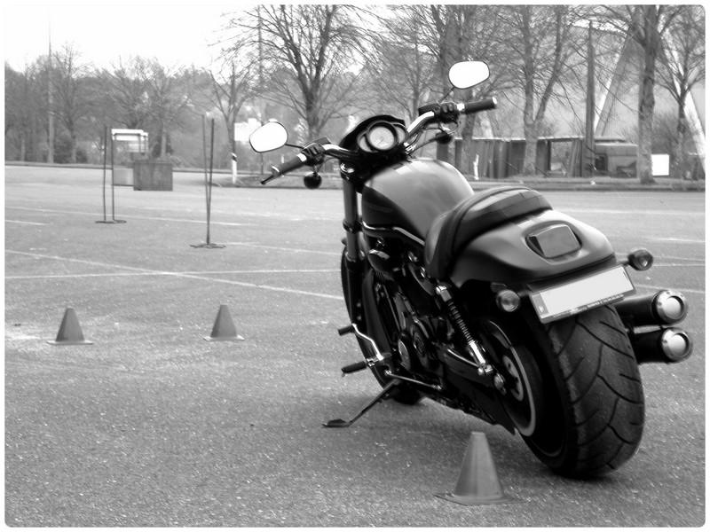 Passion : Moto Nrs510
