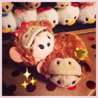Ma famille de Tsums Tsums Img_9013