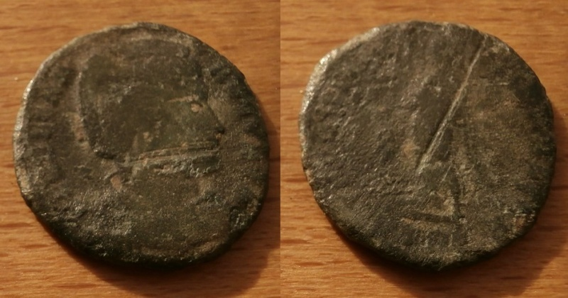 Romaine à identifier. Pb140011