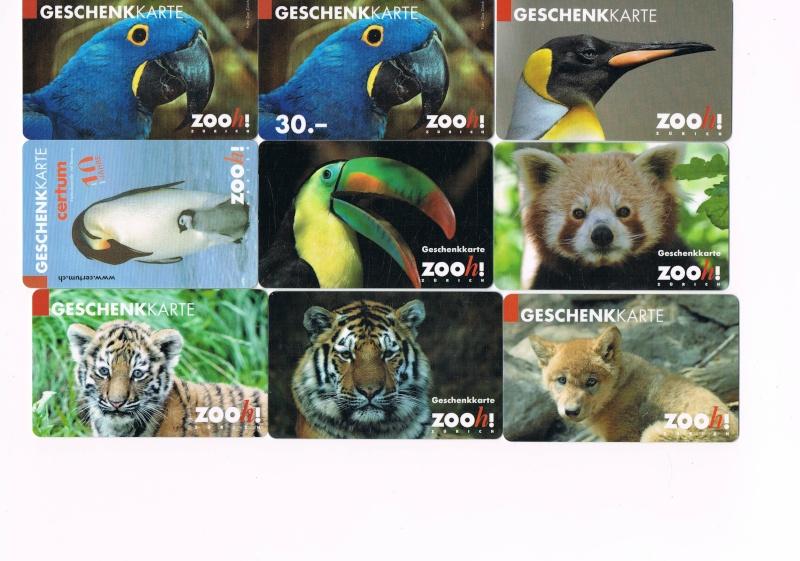 ZOO DE ZURICH Zoo_de10