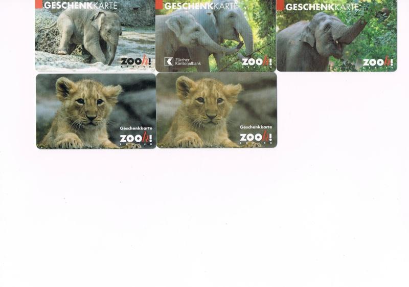 ZOO DE ZURICH Zoo_de11