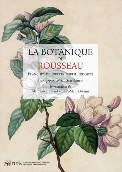 Pierre-Joseph Redouté, « Dessinateur et peintre du cabinet de la Reine » 28842910