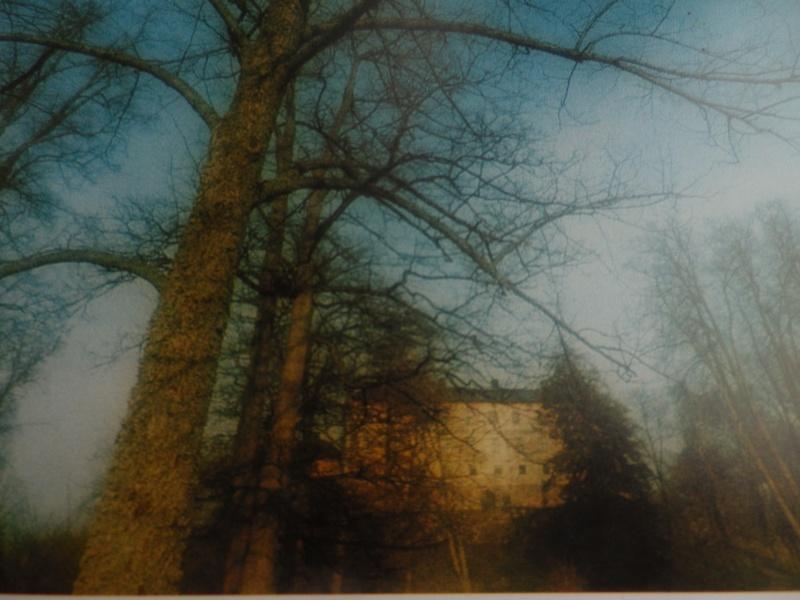 Le château de Löfstad, résidence de Sophie Piper, soeur d'Axel Fersen Fersen17