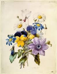 Pierre-Joseph Redouté, « Dessinateur et peintre du cabinet de la Reine » Images15