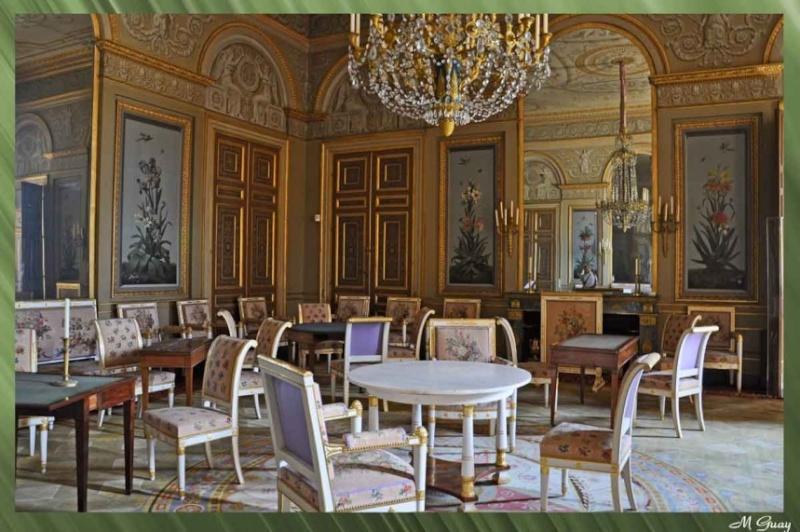 Pierre-Joseph Redouté, « Dessinateur et peintre du cabinet de la Reine » Salon-10