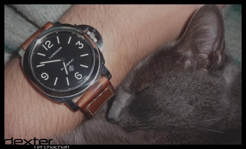 La montre du Vendredi 10 Decembre ... P1070210