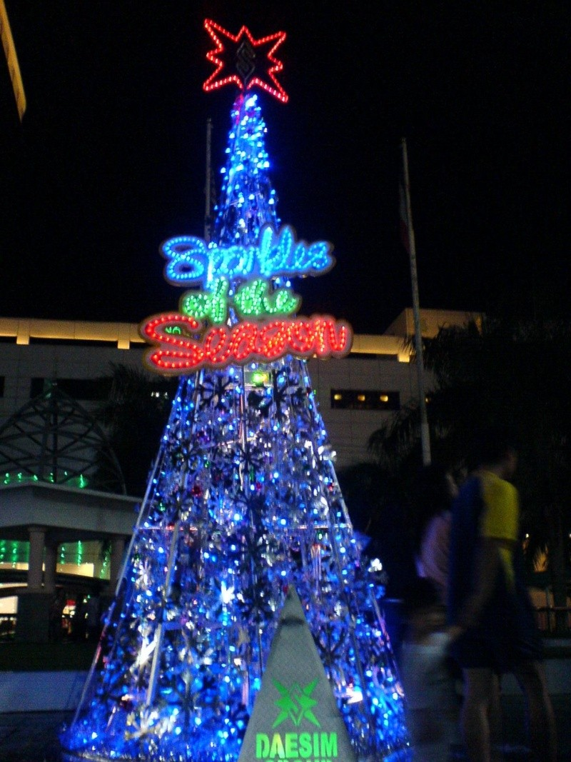 cHristmas tRees in siBu... Dsc00612