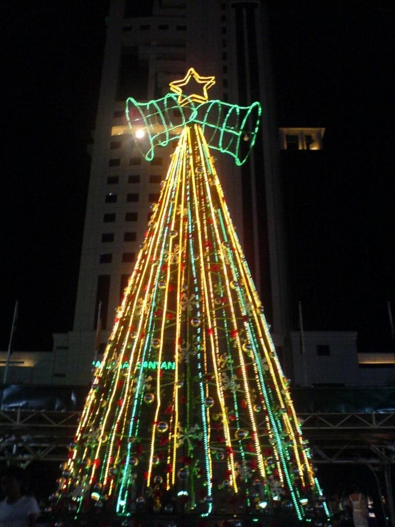 cHristmas tRees in siBu... Dsc00615