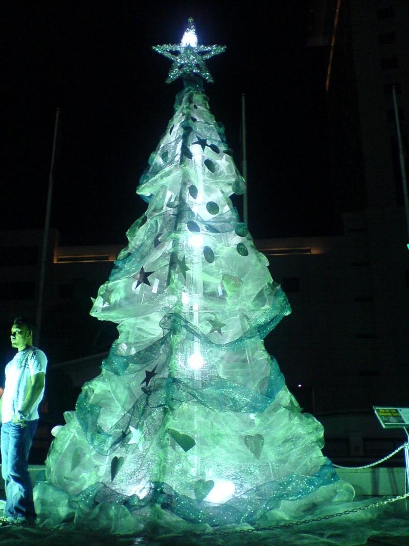 cHristmas tRees in siBu... Dsc00619