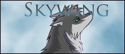 Informations générales Skywin11