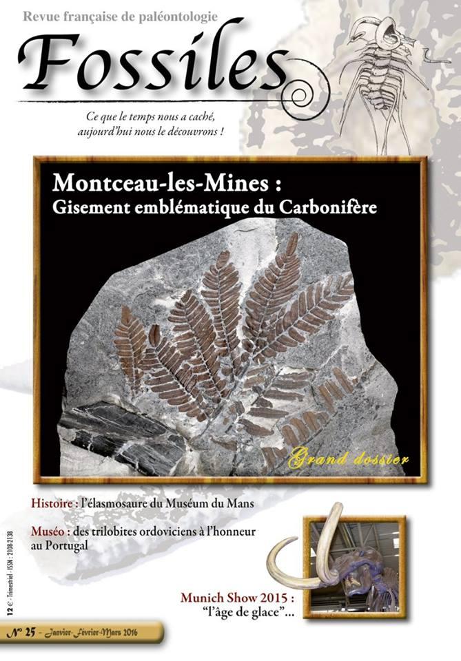 Bibliographie et sites web sur la  paléobotanique - Page 2 12644610