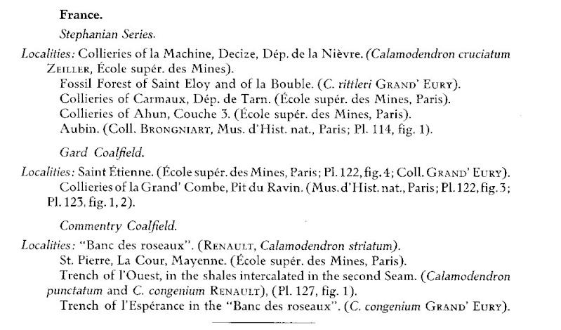 Flore Carbonifère des Alpes Françaises part 1 - Page 2 Page_111