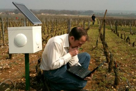 Ces paysans français soignent leurs champs en musique Arton510