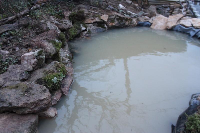 Agrandissement du bassin Img_3928