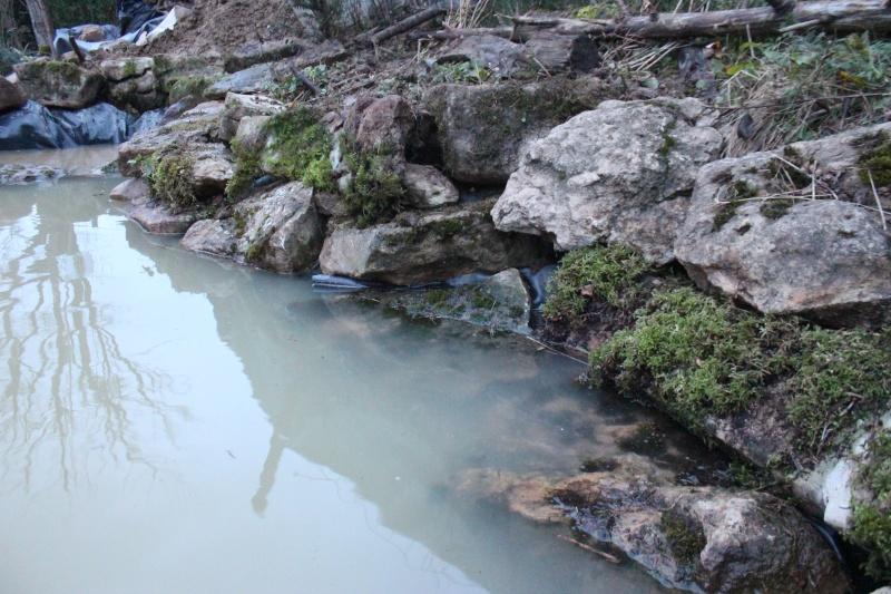 Agrandissement du bassin Img_3931