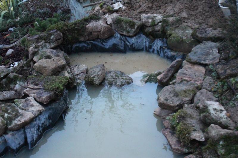 Agrandissement du bassin Img_3933