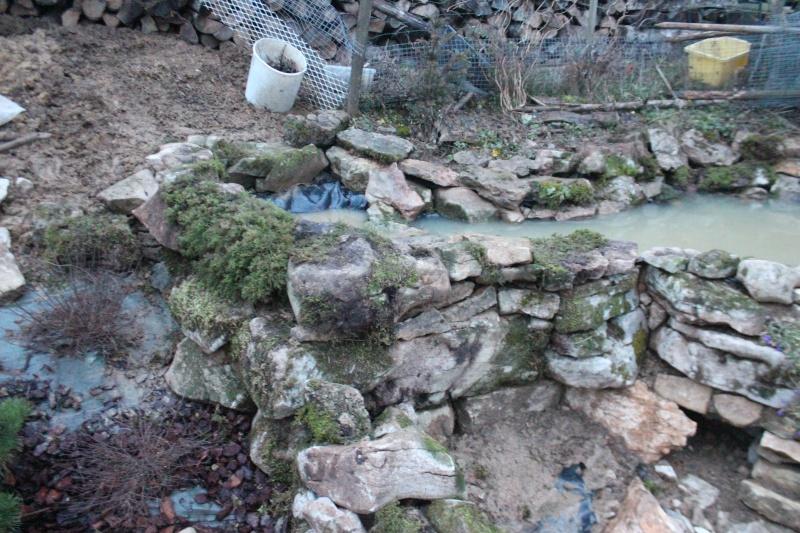 Agrandissement du bassin Img_3935