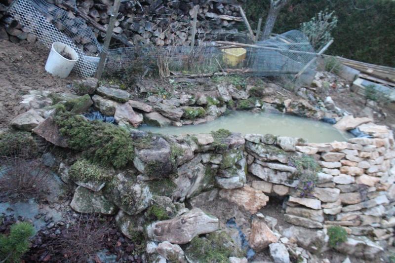 Agrandissement du bassin Img_3936