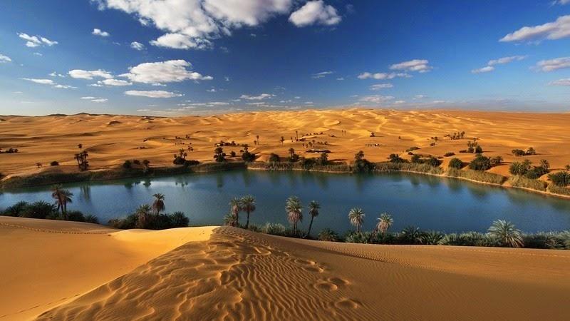 Paumés dans le désert Africain. - Page 2 Oasis_10