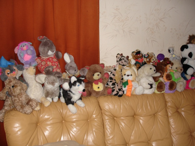 Les peluches Photo_12