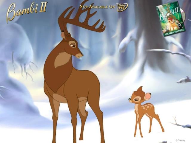 Bambi Xorg311