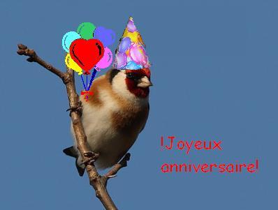 Joyeux anniversaire Frisquette Oiseau10
