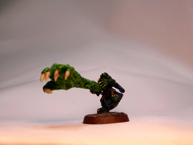 warband - Dwarven, night goblins & pirates warband. P1020726
