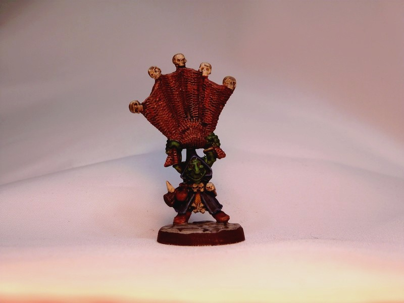 warband - Dwarven, night goblins & pirates warband. P1020727