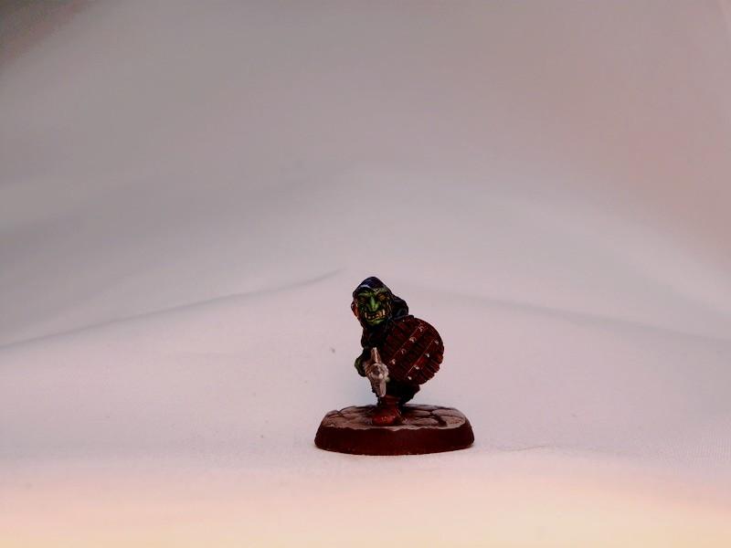 warband - Dwarven, night goblins & pirates warband. P1020729