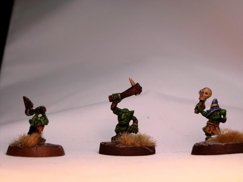 warband - Dwarven, night goblins & pirates warband. P1020732