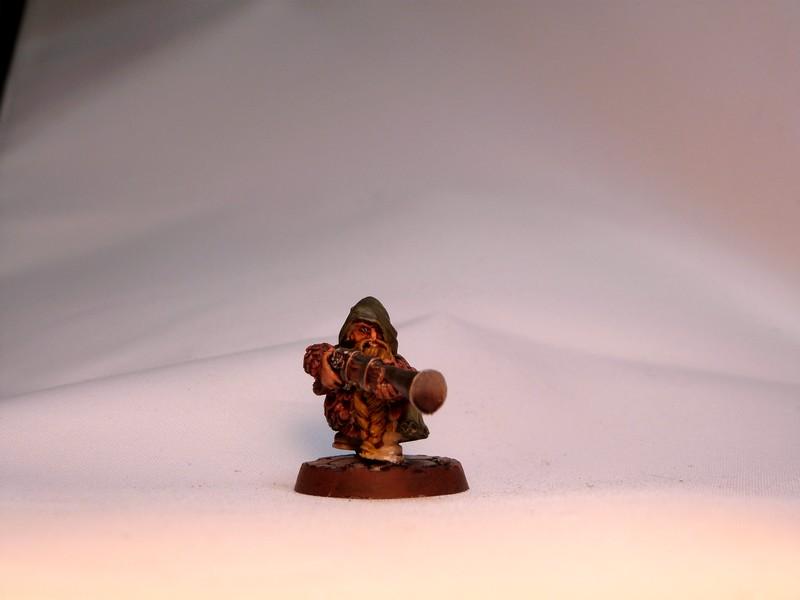 warband - Dwarven, night goblins & pirates warband. P1020739