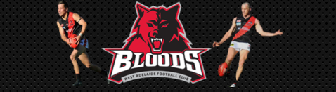 West Adelaide - Brisbane Bears VFL/AFL & Brisbane Lions Bit1010