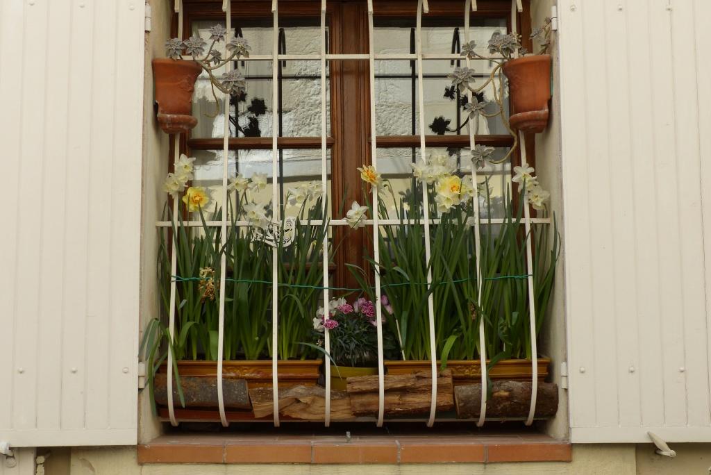[Fil ouvert ] Fenêtres, volets, ouvertures... P1020312