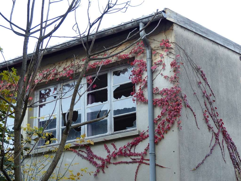 [Fil ouvert ] Fenêtres, volets, ouvertures... P1030618