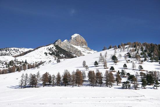 Montagne.. P1020011