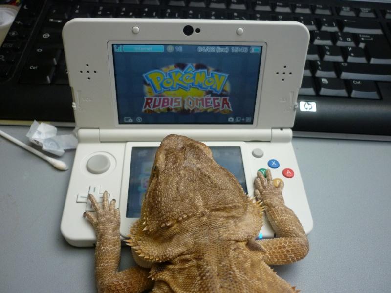 Mon pogo et ma New Nintendo 3DS Pogo10