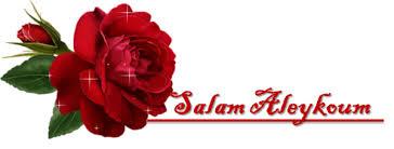 Présentation Salam11