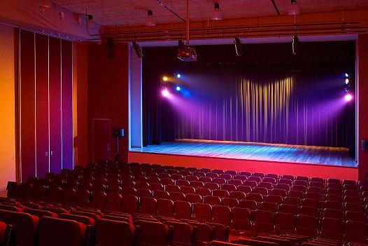 فن المسرح                      شوسما