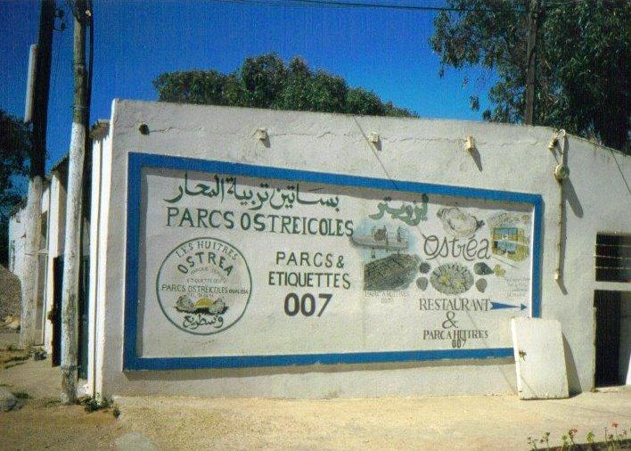 .... El-jadida vers Oualidia Parc_a10