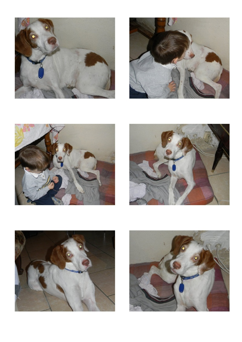 relka x pointer dept84 9ans  ADOPTEE Relka110