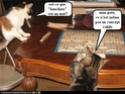 (De)Motivational Poster et Dialogues de Bêtes - Page 4 Gooddo10