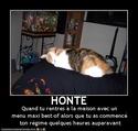 (De)Motivational Poster et Dialogues de Bêtes Honte10