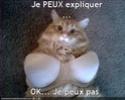(De)Motivational Poster et Dialogues de Bêtes Jepeux10