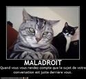 (De)Motivational Poster et Dialogues de Bêtes Maladr10