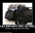 (De)Motivational Poster et Dialogues de Bêtes Otherk10