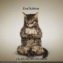 (De)Motivational Poster et Dialogues de Bêtes - Page 5 Zen10