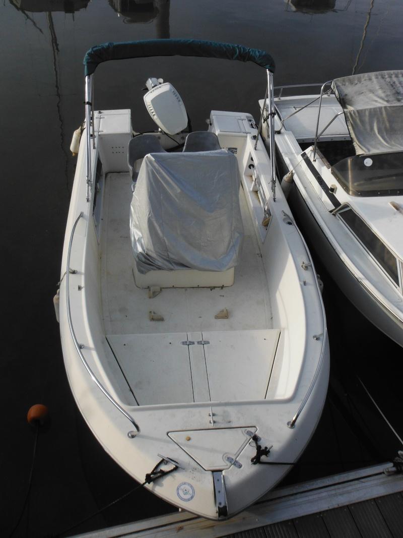 White Shark Dscf4418