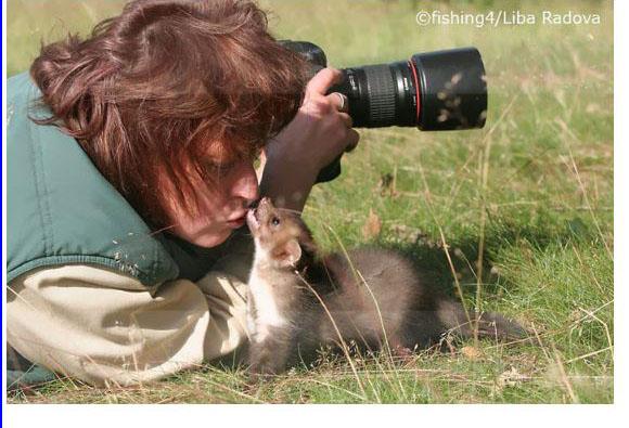 D'autres photographes chanceux... Belett12