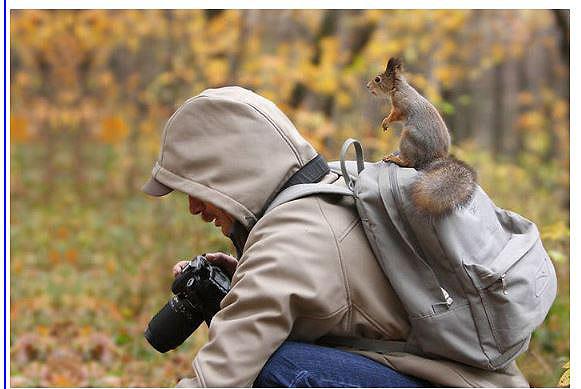 D'autres photographes chanceux... Yycure12