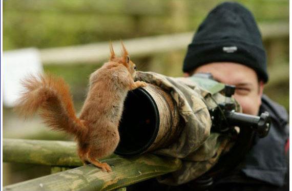 D'autres photographes chanceux... Yycure13